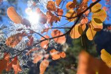 Ликийская тропа. Осенний поход