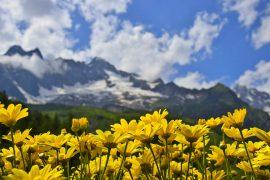 Треккинг в Альпах